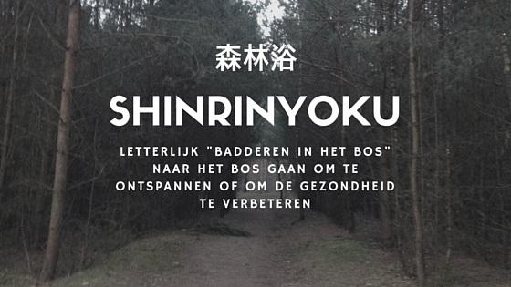Shinrinyoku - badderen in het bos voor de gezondheid