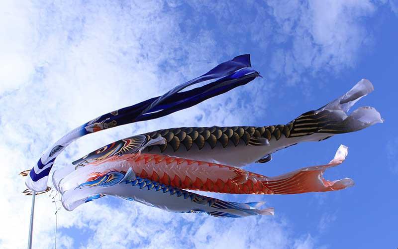 koinobori vlaggen